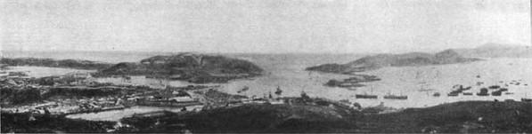 Общая панорама Порт-Артура.